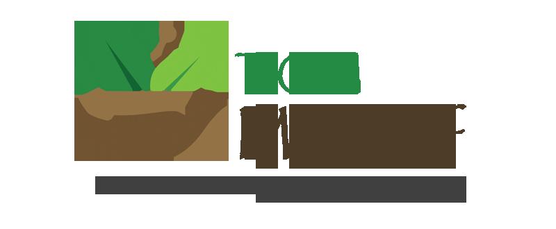 TCM Markgraf